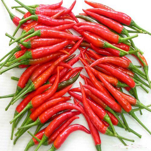 Lợi ích của việc ăn cay từ ớt